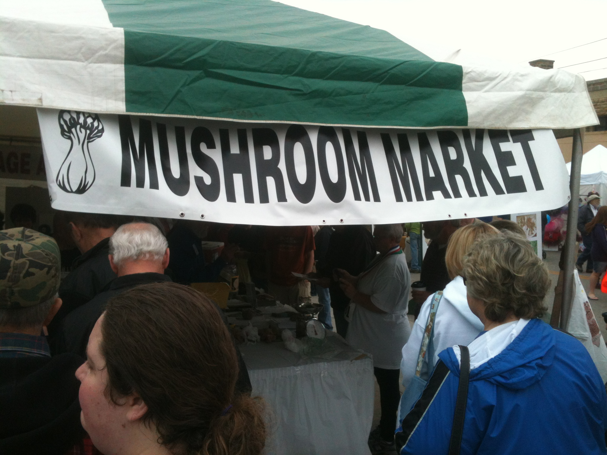 Mountain Mushroom Festival 2013 | opidells